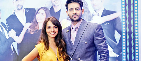 Mohib Mirza & Amina Sheikh separated