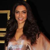 Deepika Padukone celebrates success in 2013