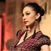 Sindh Festival Fashion Show 2014